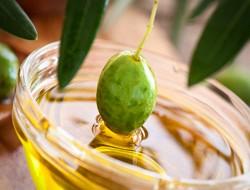 Besök en olivbonde