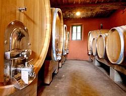 Vingårdsbesøg i Toscana